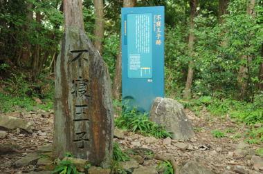 Beginner-Kumano-nezu-ouji