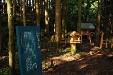 Beginner-Kumano-daimon-ouji